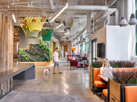 FOLLOW THESE 5 COMPANIES AND CREATE A GREEN OFFICE